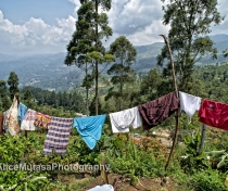 Washing day - somewhere between Kandy & Ella...