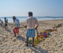 Fishermen on Uppuveli beach, pulling in the nets in the morning