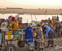 Crossing the Niger river at Djenné 02