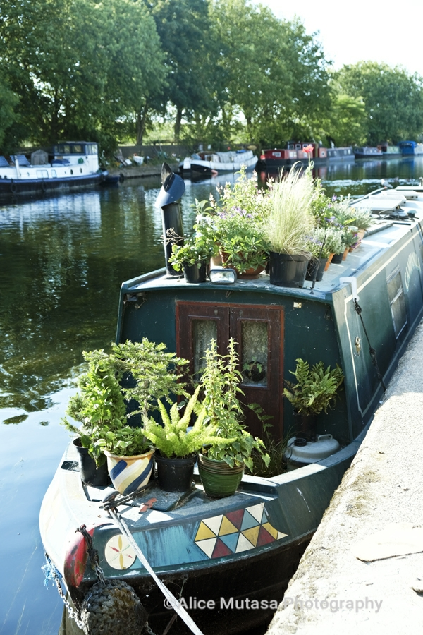 Beautiful houseboat, River Lee