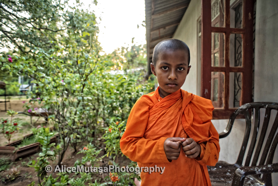 Sudhiva Vimala Darma - young monk at our local temple outside Dambulla