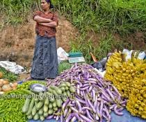 Abundance! Ella market....