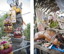 Offerings at private shrine ceremony; Sumerkima village, Bali