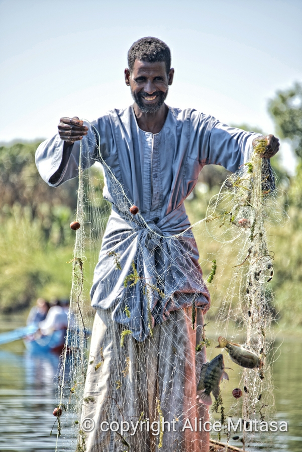 Saad - Nile fisherman