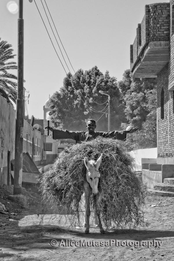 Mahmoud Kilimanjaro on his donkey