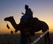 Festival au Desert 2011