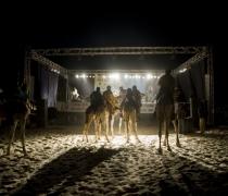Festival au Desert / Festival in the Desert - Timbuktu, Mali