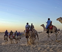 Touareg nomads on their camels heading off into the sunset....