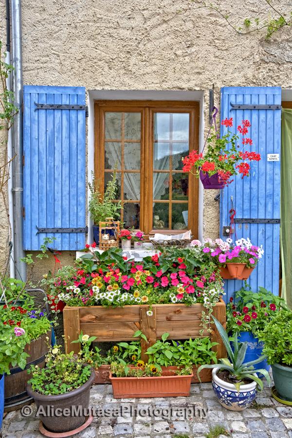 Beautiful Savoillan