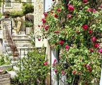 Beautiful Aurel village
