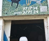 Man Balou dive centre / centre de plongée