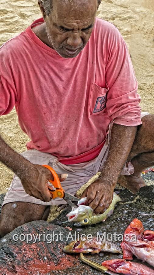 Anil preparing fish on the beach