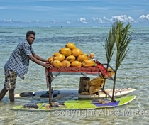 Cedric & his floating coconut stall
