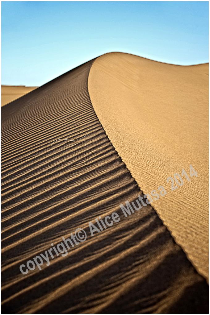 Sahara....
