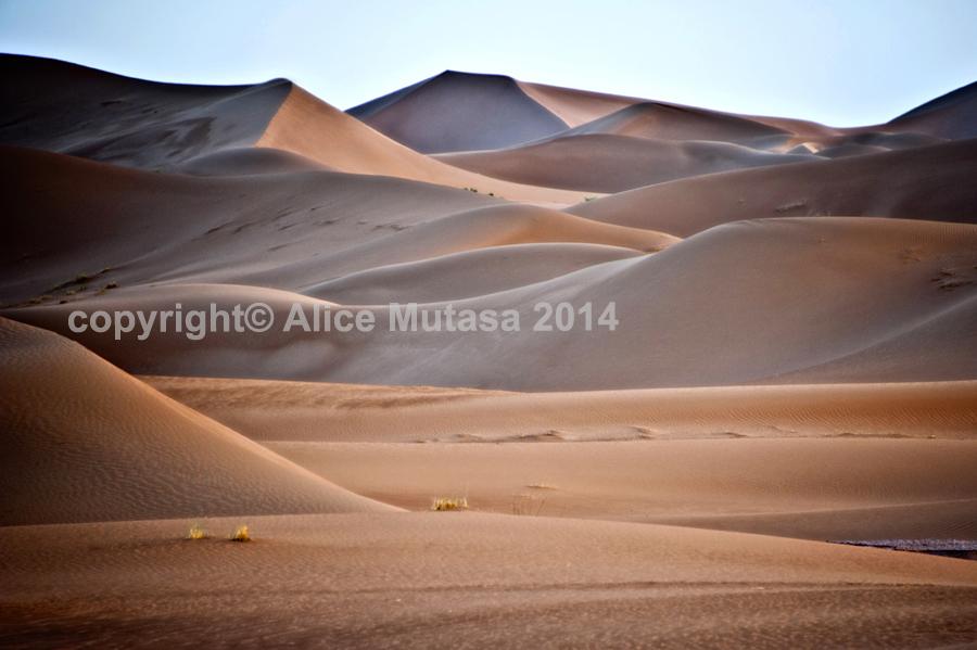 Sahara 14 - Erg Chigaga