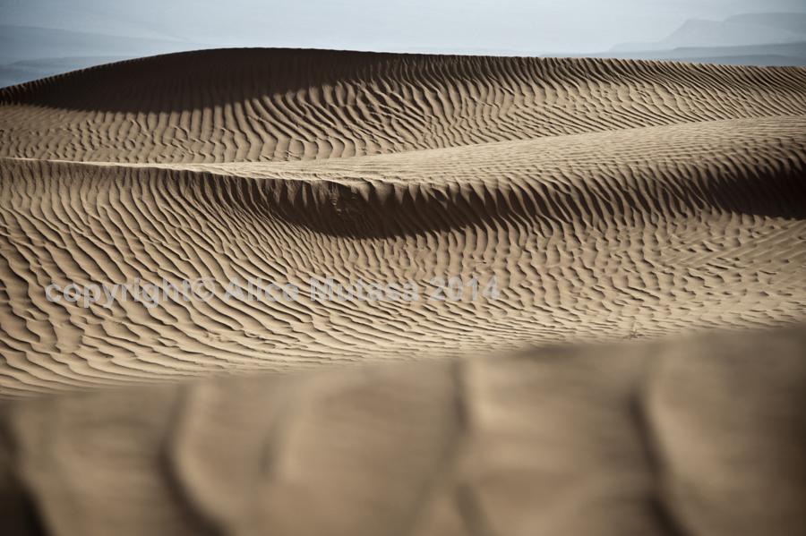 Sahara 03 - Erg Chigaga