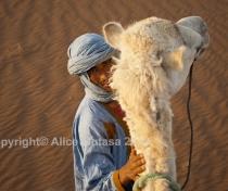 Sahara 06: Hassan + Labiat