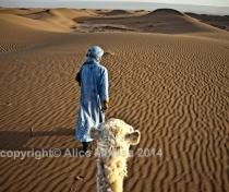 Sahara 04: Hassan + Labiat