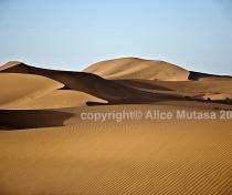 Sahara 17