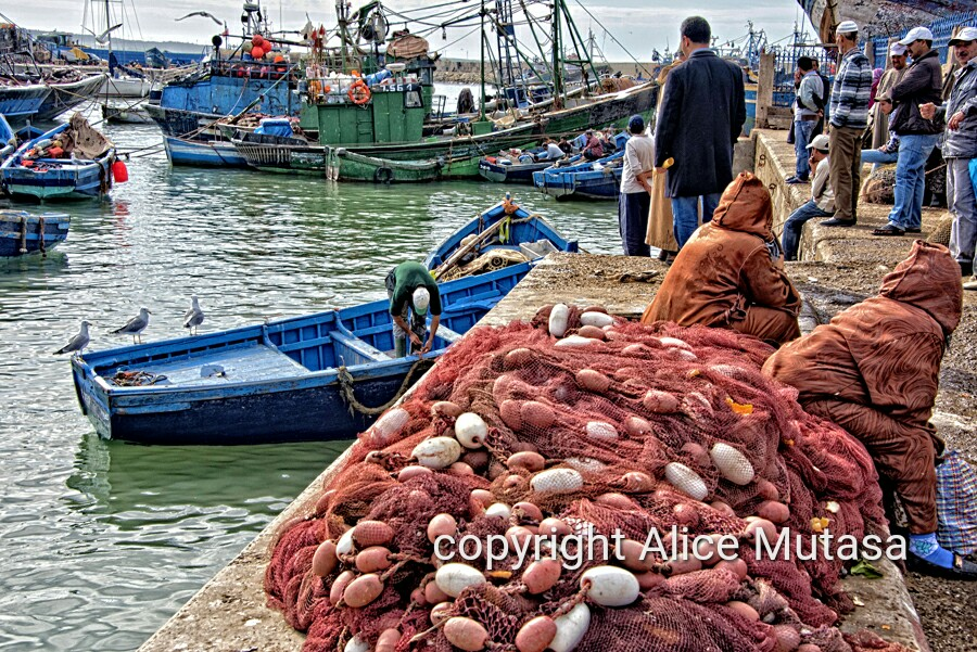 Essaouira port in HD #1