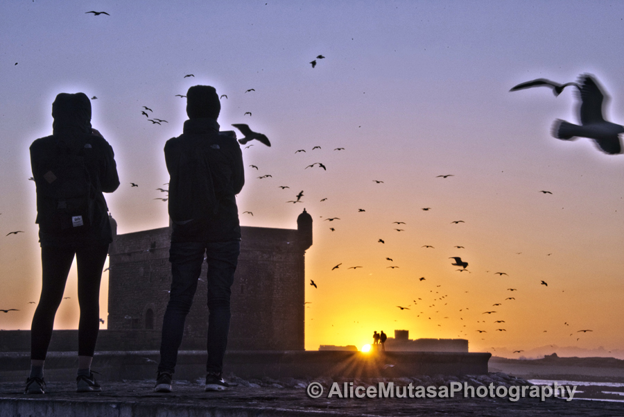 Sunset watchers & seagulls....