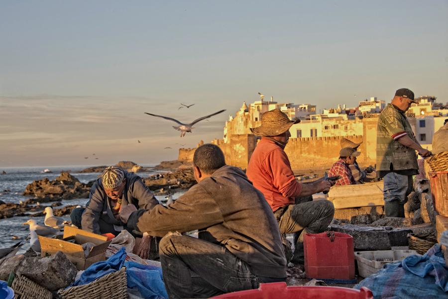 Fishermen at dusk - Essaouira harbour