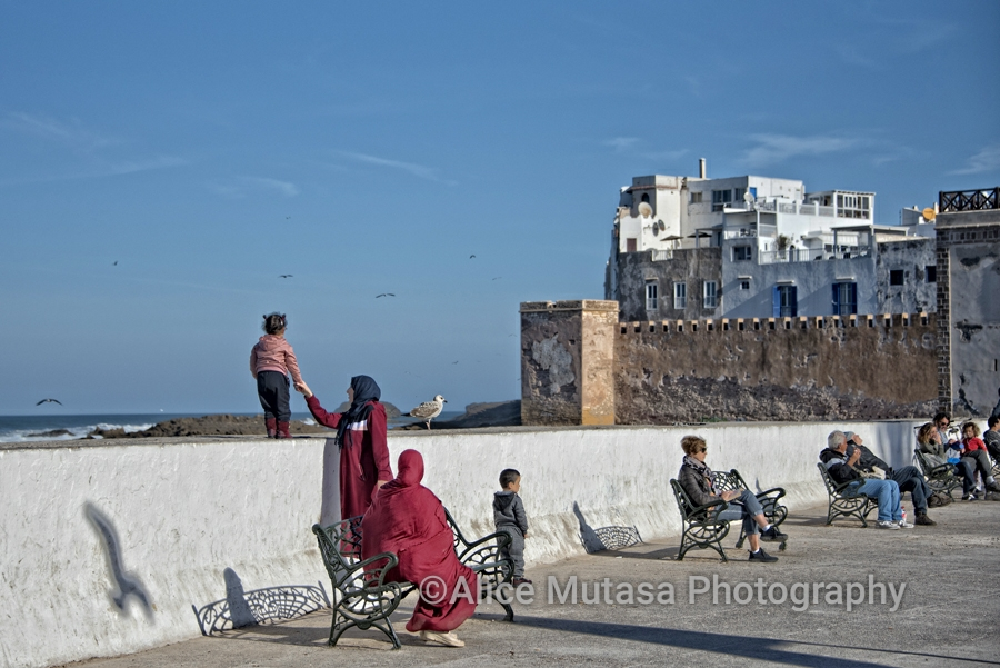 Lazing by the sea wall, Essaouira