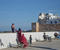Lazing by the sea wall, Essaouira