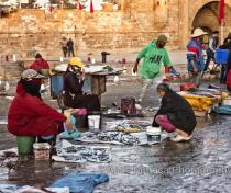 Fish on sale, Essaouira port