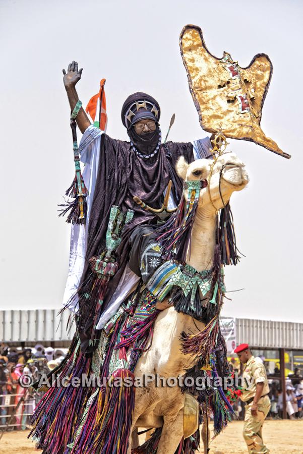 Camel fantasia