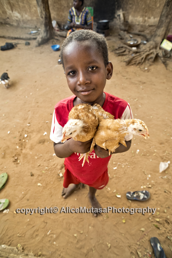 Ousmane with the baby chickens