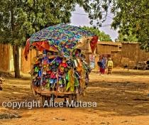 Marchand ambulant / travelling salesman in Niamey