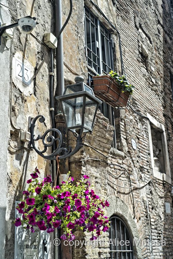Beautiful old wall at Via del Portico d'Otavia