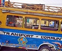 'Transport en Commun', Saint Louis