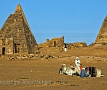 Meroë - with post-full moon behind the pyramids