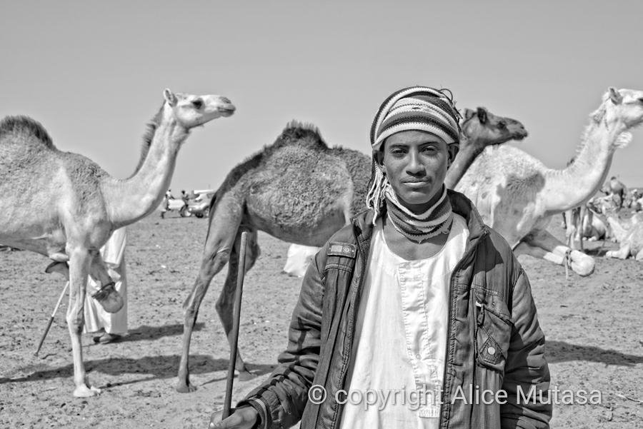 Ali; Omdurman camel market