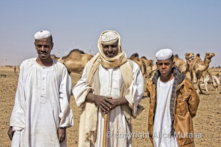 Abdelghardirha, Zein and Moussab  - Omdurman camel market