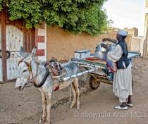 Hamid the milkman, Wad al-Bakheet; Omdurman