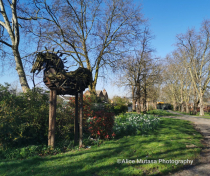 Chestnuts Park