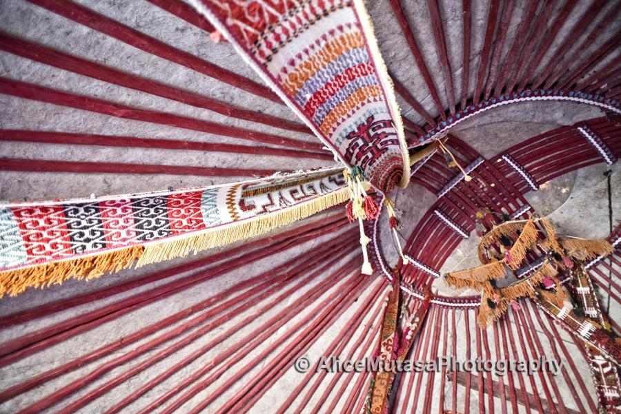 Detail of yurt interior, Kyzylkum Desert