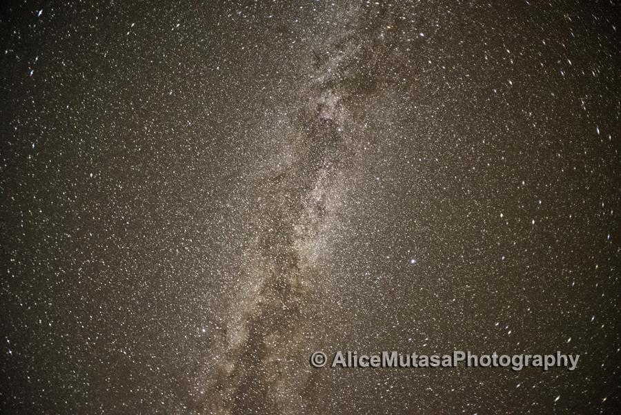 Desert stars....