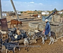 Dungelek village