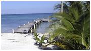 Saving Paradise (Marine conservation, Belize 2006)