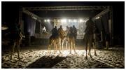 'Festival au Desert 2011′ – Official Photos now online