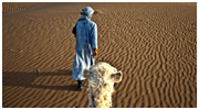 New photos of Morocco – South & Sahara