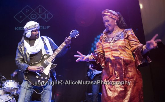 NEW PHOTOS of amazing Touareg band Kel Assouf